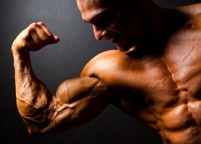 bodybuilding-11a
