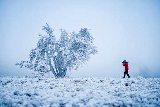 雪かきダイエット!東北在住のオレが雪かきのコツを教える件