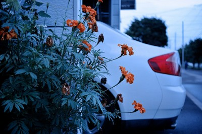 自宅駐車場を他人に貸すのは有りか?法人契約3年目の経験を語る