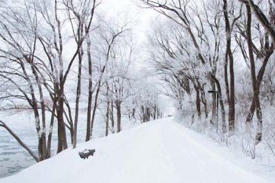 冬の雪国脱出計画!週末は温暖な土地でロードバイクを楽しみたい件