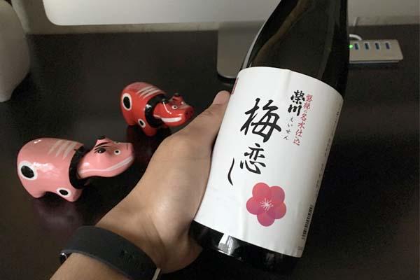 この梅酒うまい!酒蔵巡りで出会った榮川(えいせん)の梅恋しを推したい件