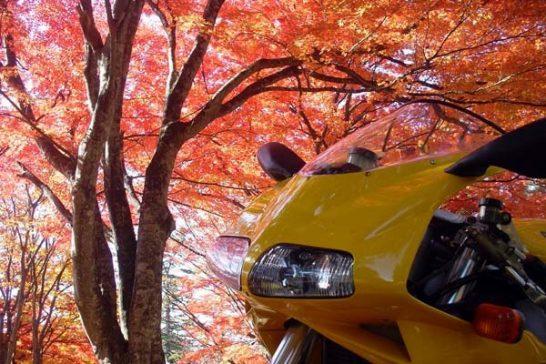 休日は福島で紅葉見物!秋の天気は不安定だが裏磐梯や奥会津をブラブラの巻